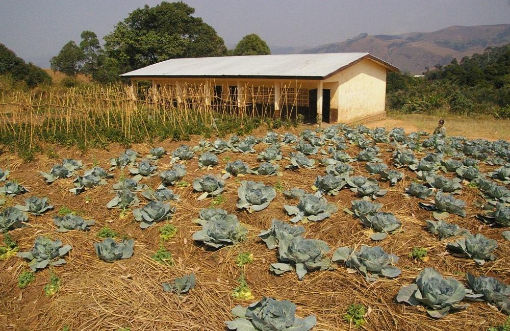 outils et de semences pour une ferme scolaire