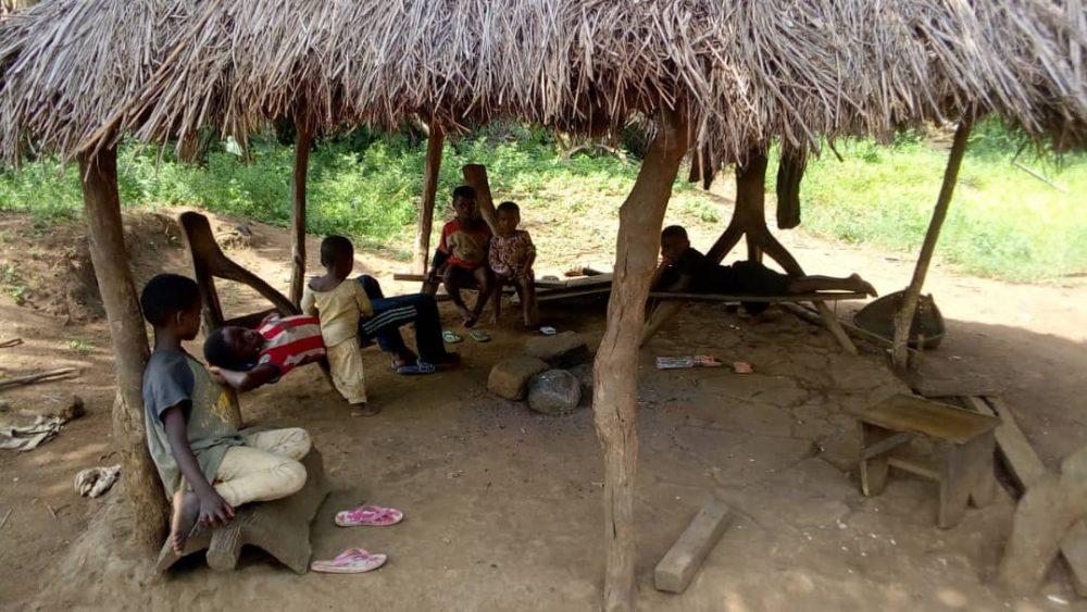 bush IDPs