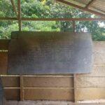 Mindassi school