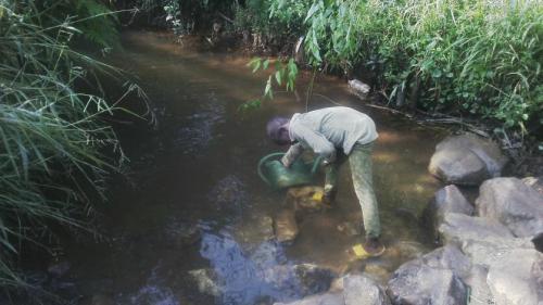 stream water GS Nketisoh